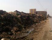 بالصور ..أهالى زفتى يشكون تراكم القمامة في الشوارع ومخاوف من انتشار الأمراض
