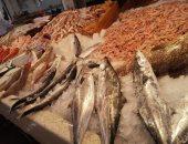التموين: طرح 23 طن أسماك يوميًا بمنافذ المجمعات الاستهلاكية