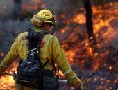 فيديو ..حرائق فى غابات استراليا والسلطات تدفع بـ ألف رجل إطفاء لمحاصرة النيران