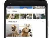 تطبيق Google Photos يمكنه الآن التعرف على الحيوانات داخل الصور