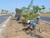 رئيس مدينة كفر الشيخ يتابع تشجير ميدان الملك عبد الله وإنشاء شونة المرور