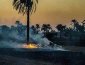 """بالصور.. شكوى من حرق """"البوص"""" فى قرى """"منفلوط"""" بأسيوط والإضرار بصحة المواطنين"""