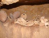 قبل تفقد وزير الآثار.. كل ما تريد معرفته عن مقابر بناة الأهرام