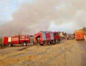 بالصور.. حريق يلتهم نصف فدان قش أرز فى الشرقية