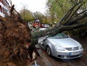 عاصفة قوية تقتلع الأشجار وتقطع التيار الكهربائى فى إستراليا