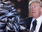 """هل ينجح الرئيس الأمريكى فى إنهاء اتفاقية """"نافتا"""" بوقف استيراد التونة من المكسيك.. الإدارة الأمريكية تتهم الصيادون بقتل أسماك الدولفين المستخدمة فى التصنيع.. والمكسيك تخسر أهم معاركها التجارية أمام ترامب"""