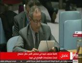 بالفيديو.. مندوب ليبيا بمجلس الأمن: بلادى دولة عبور للجماعات الإرهابية