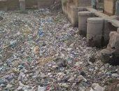 بالصور.. شكوى من تراكم القمامة والحيوانات النافقة فى ترعة الجيزاوية بالبدرشين