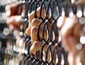 حبس 19 متهما فى أحداث قرية أبيوقا 15يوما على ذمة التحقيقات وأوامر ضبط لآخرين