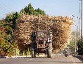 صورة اليوم...على الطريق الزراعى.. مكن داير وعزيمة بتسوق
