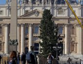 صور.. نصب شجرة عيد الميلاد فى ساحة القديس بطرس بالفاتيكان