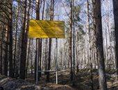 صمت روسيا إزاء السحابة الإشعاعية فوق أوروبا يثير القلق