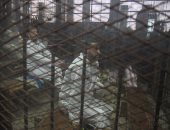 """الجنايات تجدد حبس 7 أشخاص لاتهامهم بالانضمام لتنظيم """"ولاية سيناء"""""""