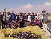 استخراج طن أسماك من أحواض الاستزراع بجنوب سيناء