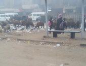 صور.. تراكم القمامة بموقف أتوبيس المسلة بالمطرية والأهالى يستغيثون