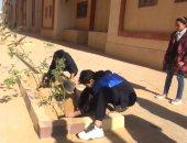 صور.. زراعة 500 شجرة بالسويس هدية لأرواح شهداء مصر