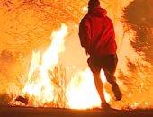 """فيديو.. شاب أمريكى يتحدى حرائق كاليفورنيا لإنقاذ """"أرنب"""""""