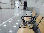 صور..قطط وقمامة بمستشفى جمال عبد الناصر فى محافظة الإسكندرية