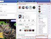 فيس بوك يزيل ميزة ticker بعد 6 سنوات من إطلاقها