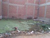 شكوى من طفح مياه الصرف فى أحد شوارع القليوبية