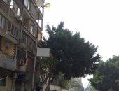 ترك أعمدة الكهرباء مضاءة نهارا فى شارع طومان باى بالزيتون .. صور