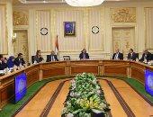 القائم بأعمال مجلس الوزراء يوافق على إسقاط جنسية مصرية تجنست الإسرائيلية