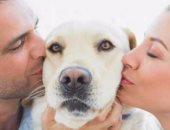 تربية الكلاب والقطط سبب فى إصابتك بهذه العدوى!
