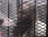 """استكمال سماع الشهود فى محاكمة 213 متهما بـ""""تنظيم بيت المقدس"""""""