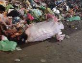 صور.. تراكم أكوام القمامة بشارع القومية فى مدينة الزقازيق.. ومطالب بإزالتها