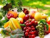 تعرف على إجراءات الزراعة حول تصدير الجوافة والرمان ×10 معلومات