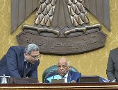 مجلس النواب يوافق نهائيا على قانون حقوق ذوى الإعاقة بأغلبية ثلثى الأعضاء