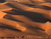 علماء يعملون على زيادة الأمطار فى الصحراء الكبرى وتحويلها لمساحة خضراء