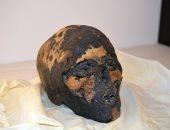 إعادة جمجمة مومياء فرعونية لمصر بعد 90 عاما من تهريبها إلى أمريكا