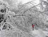 السلطات الألمانية تحذر المواطنين من قرب هبوب عاصفة ثلجية جديدة