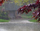 المطر مرح ودعاء ومشمع غسيل.. كيف يختلف شعور الأنثى بالمطر وفقا للعمر