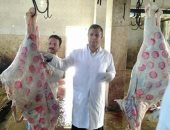 الزراعة:حملات بيطرية بأسواق بيع الماشية ومنافذ بيع اللحوم استعداد للعيد