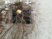 قارئ يحذر من بلاعة بدون غطاء بجوار ساعة الزهور فى الإسكندرية ويطالب بإصلاحها