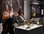 القلب يعشق كل جميل.. متحف يضم أغرب الطيور وأجملها فى فرنسا