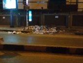 تراكم القمامة وانتشار الكلاب الضالة فى شارع نادى الصيد بالدقى.. صور