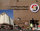 """""""الوطنية للانتخابات"""" تتلقى نتائج تصويت المصريين بالخارج على تكميلية أشمون"""
