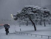 صور.. عاصفة ثلجية تضرب طوكيو لأول مرة منذ 4 أعوام