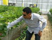 صور.. تطبيق منظومة المكافحة الحيوية بـ100 ألف صوبة لإنتاج ثمار بدون مبيدات