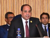 ممتاز الدسوقى: رئاسة مصر للقمة الأفريقية 2019 نتاج حتمى لدور مصر الريادى