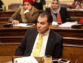 ممثل الثقافة أمام البرلمان يطالب بموازنة خاصة لتعزيز التوجه الثقافى بأفريقيا  (صور)