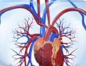 مؤتمر أمراض القلب بجامعة بنها يعلن عن علاج جديد لهبوط عضلة القلب