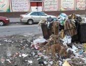 قارئ يطالب برفع القمامة من أمام مدرسة جواد حسنى بشارع السودان المهندسين