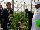 """رئيس """"الوطنية للزراعات المحمية"""" يهدى الرئيس مصحفا بمناسبة افتتاح مشروع الصوب (صور)"""