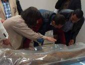 تعرف على مسار نقل 22 مومياء من المتحف المصرى إلى مصر القديمة