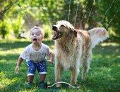 ضحك ولعب وجد وحب.. صور تسرد حياة الكلاب مع أصدقائها