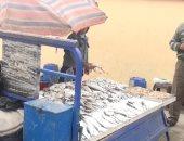 صور.. تعرف على أسعار الأسماك بأسواق السويس اليوم السبت